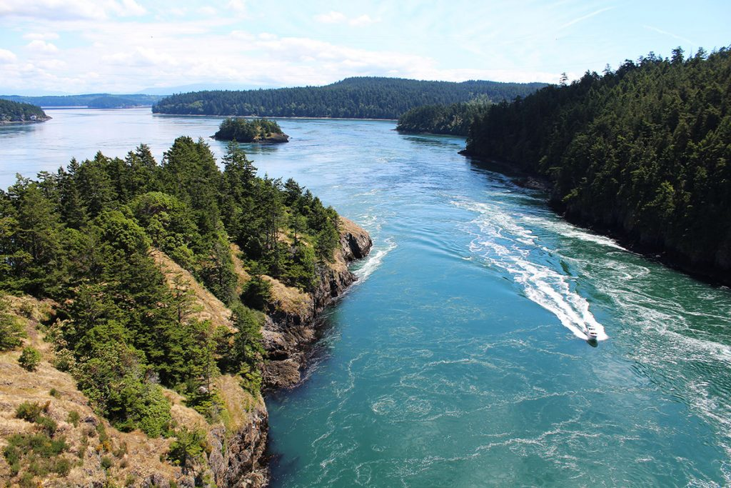 Seattle Day Trips For Nature Lovers